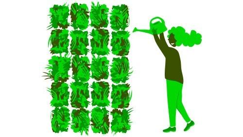 Hoe groener, hoe beter de luchtkwaliteit